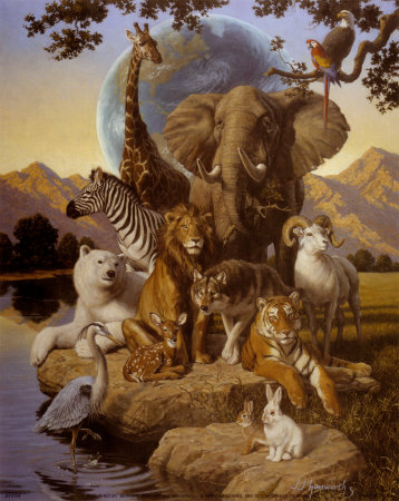 JH0104~African-Animals-Posters